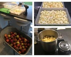 Pomme pour compote